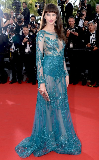 Frederique Bel in Zuhair Murad - Photo by Dominique Chamau - Wire Image