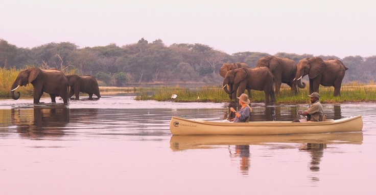 Chiawa Camp Safari - Courtesy of chiawa.com