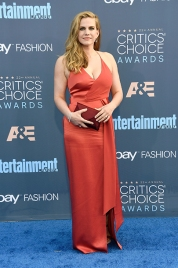 SANTA MONICA, CA - DECEMBER 11: Actress Anna Chlumsky attends The 22nd Annual Critics' Choice Awards at Barker Hangar on December 11, 2016 in Santa Monica, California. (Photo by Frazer Harrison/Getty Images)